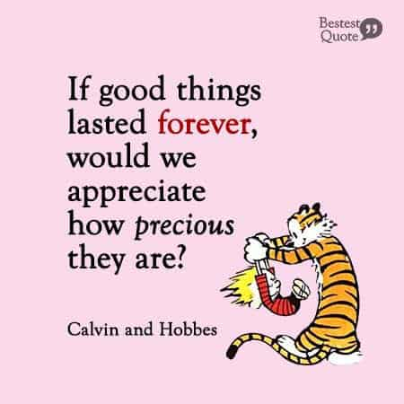 If good things lasted forever, would we appreciate how precious they are? Calvin and Hobbes