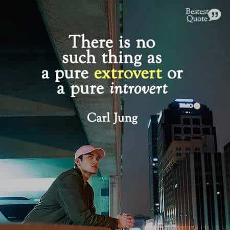 There is no such thing as a pure extrovert or a pure introvert. Ambivert Quote