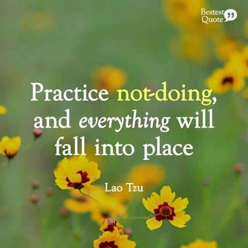 """Practice not doing and everything will fall into place."" Lao Tzu"
