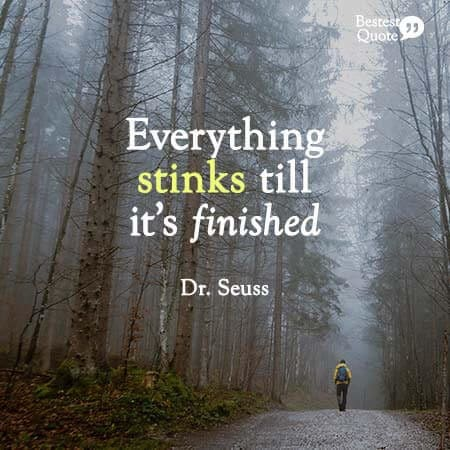 """""""Everything stinks till it's finished"""" Dr. Seuss"""