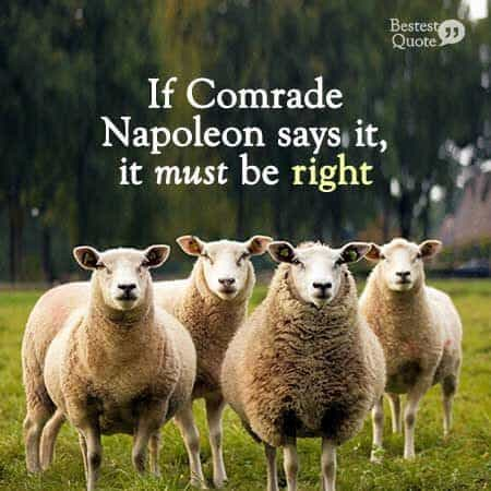 """If Comrade Napoleon says it, it must be right"" George Orwell, Animal Farm"